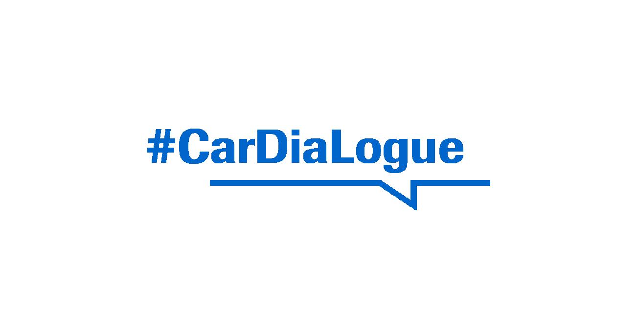 CarDiaLogue Visual