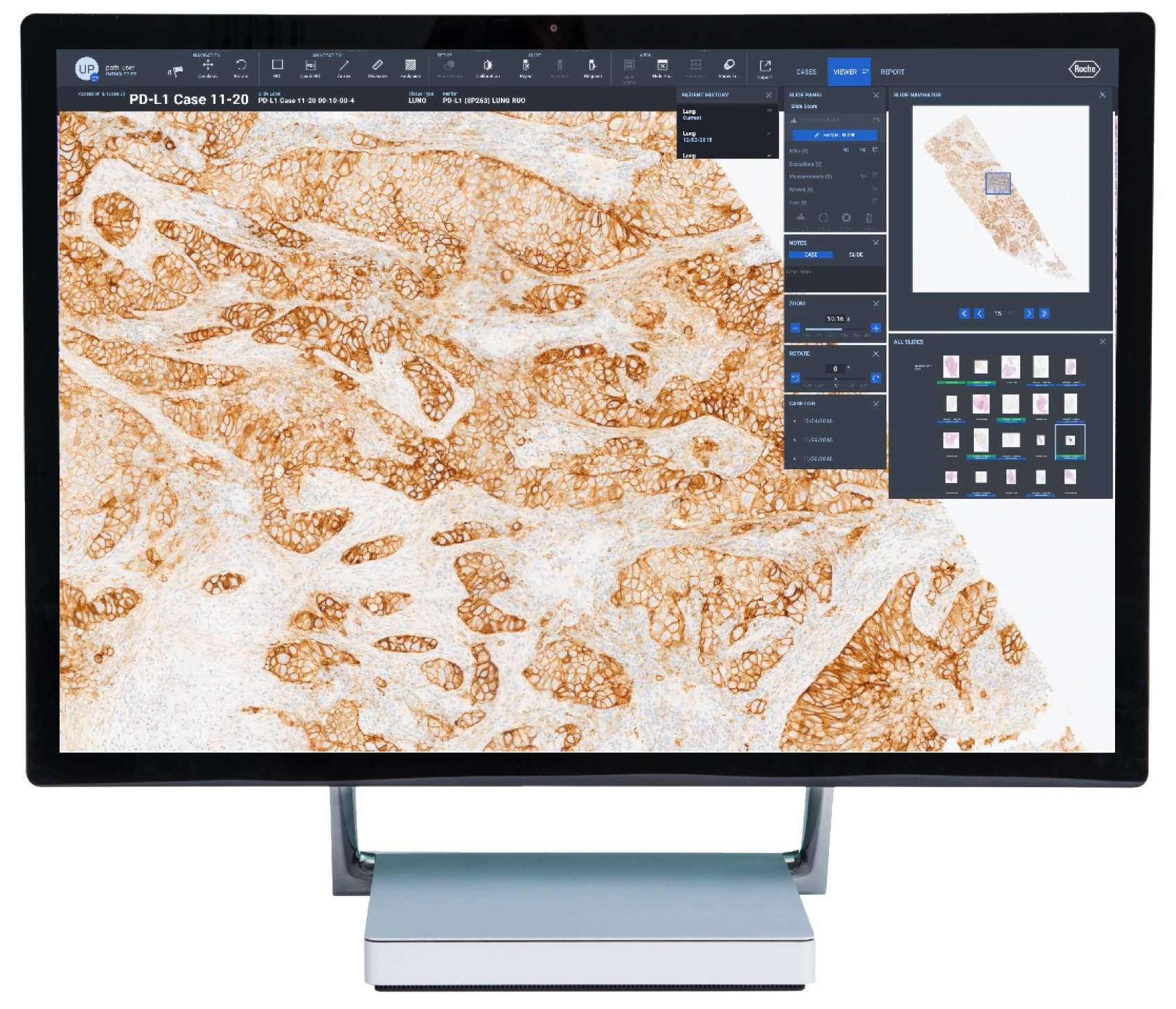 NAVIFY Digital Pathology