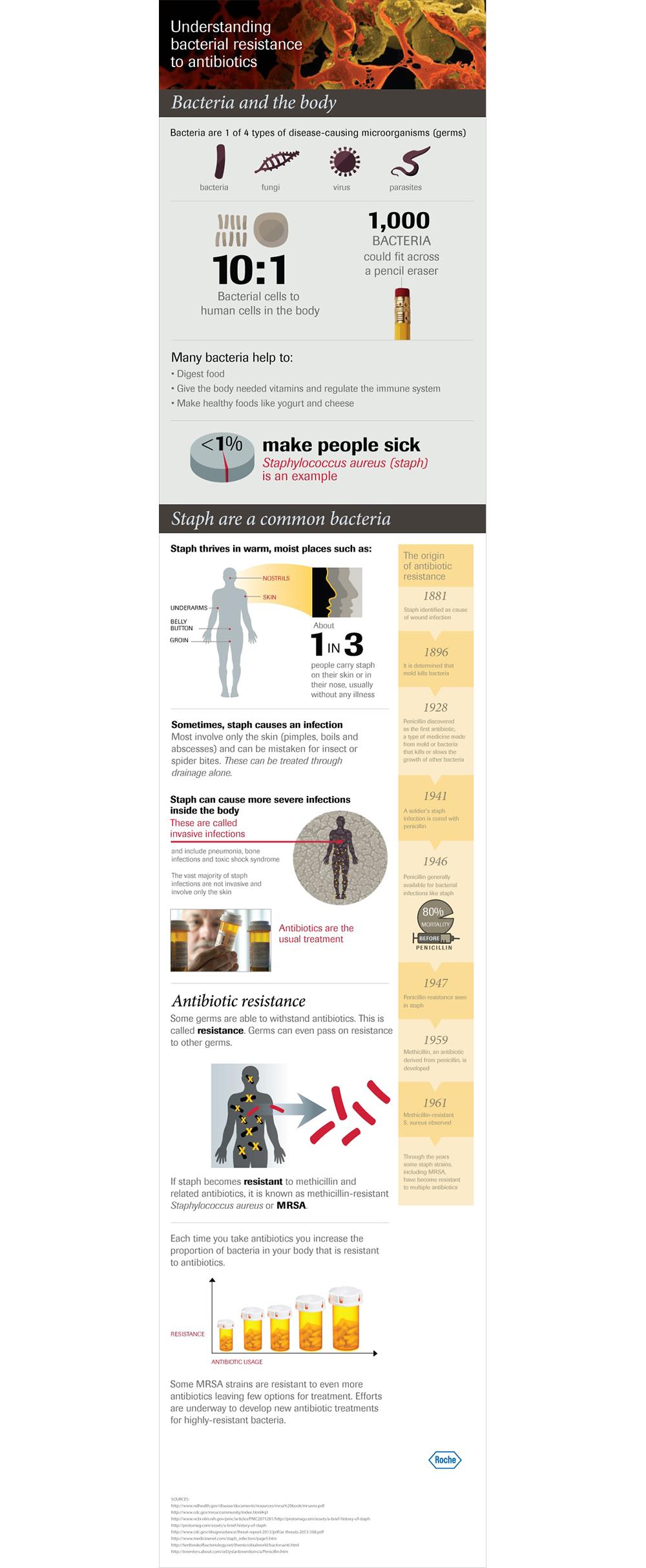 Infographic: Understanding bacterial resistance to antibiotics