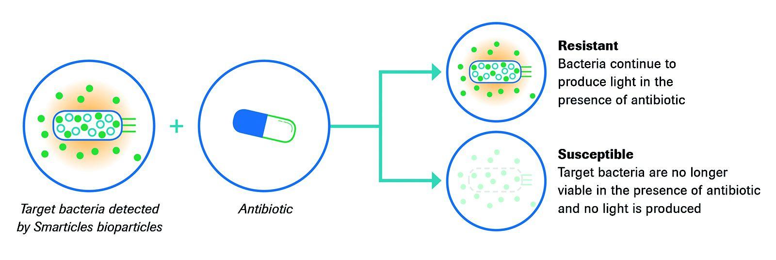 phenotypic-detection-of-drug-resistance