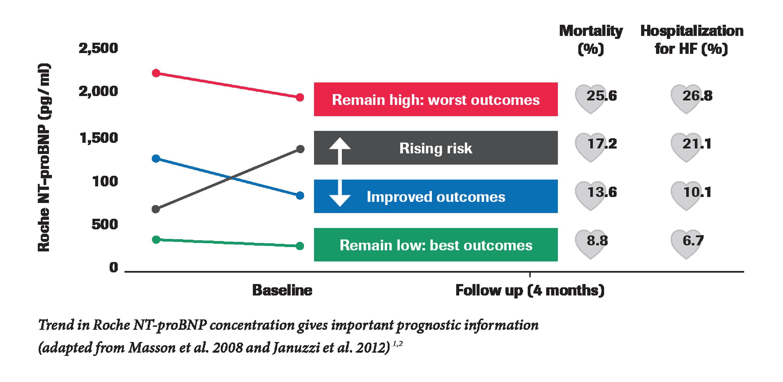 Roche NT-proBNP prognosticator chart