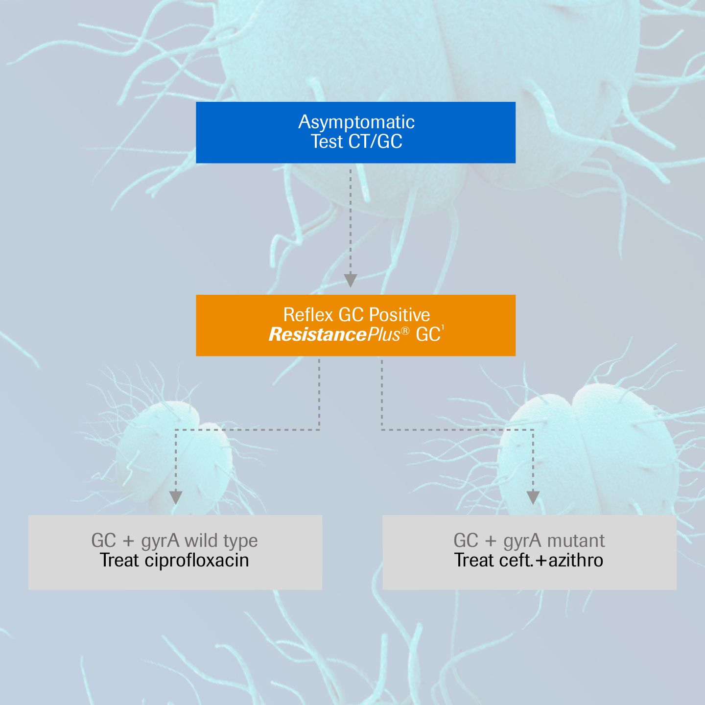 Non-empirical treatment strategy for Neisseria gonorrhea using ResistancePlus® GC