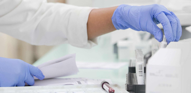 cobas® 6800システムからの血液スクリーニング結果を見ている臨床検査技師