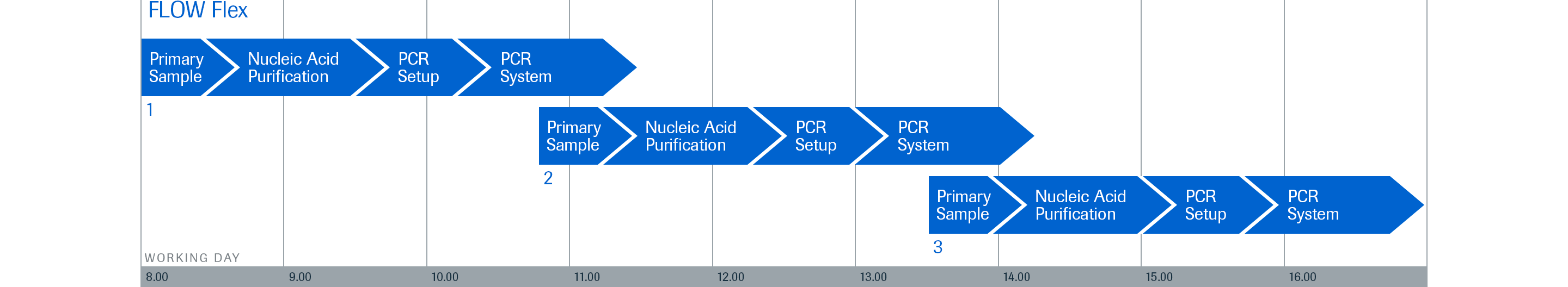 RMD_NAP qPCR_FLOW Flex Staggered Runs Timeline