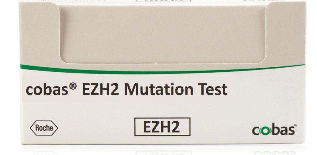 コバス EZH2 用製品ボックス