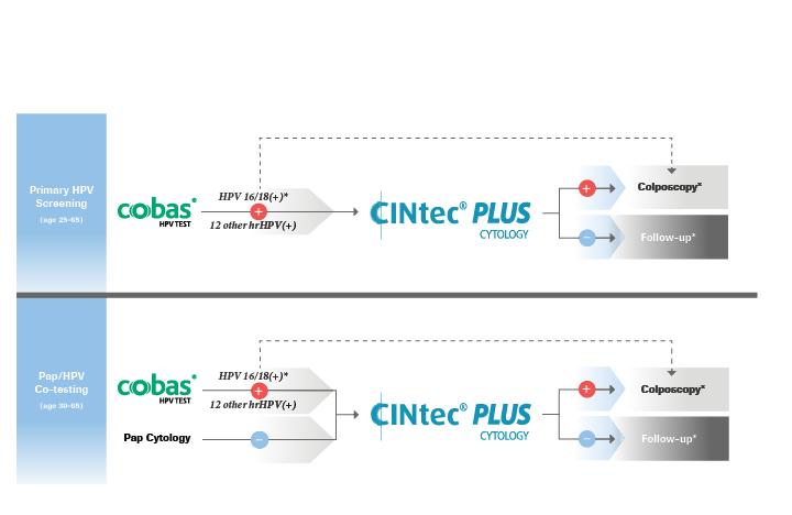 CINtec_PLUS_Triage_Test2