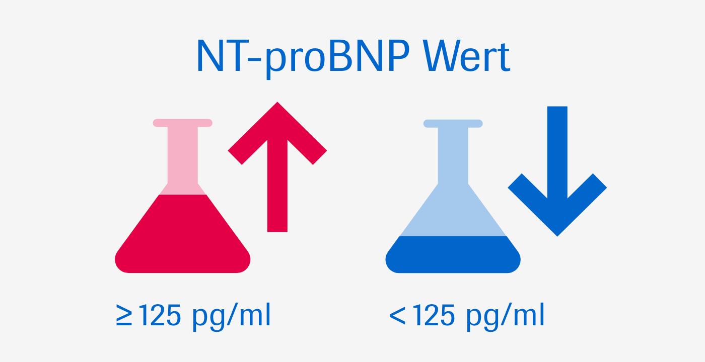 NT-proBNP gibt Ihnen Sicherheit