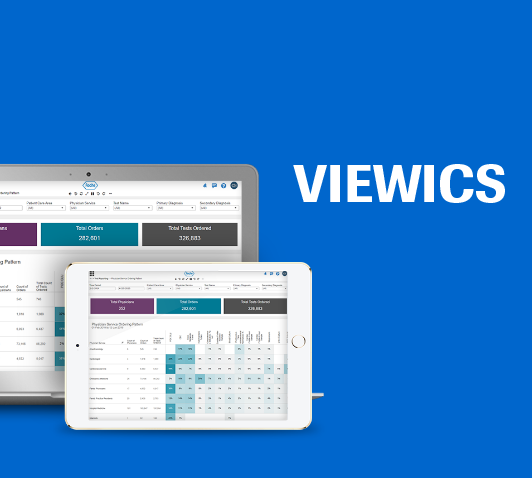 Viewics Software auf Bildschirm