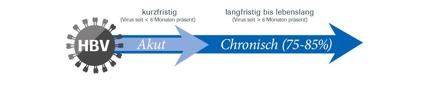 Akute und chronische HBV-Infektion