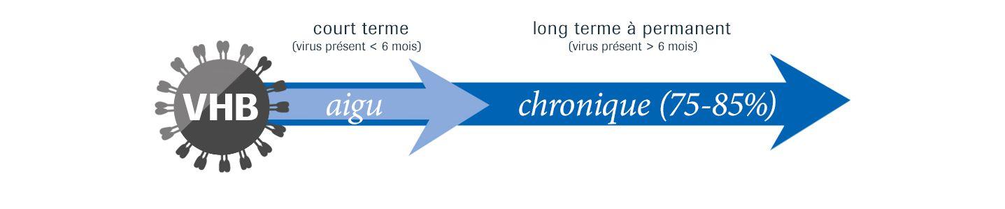 Acute & Chronic HBV