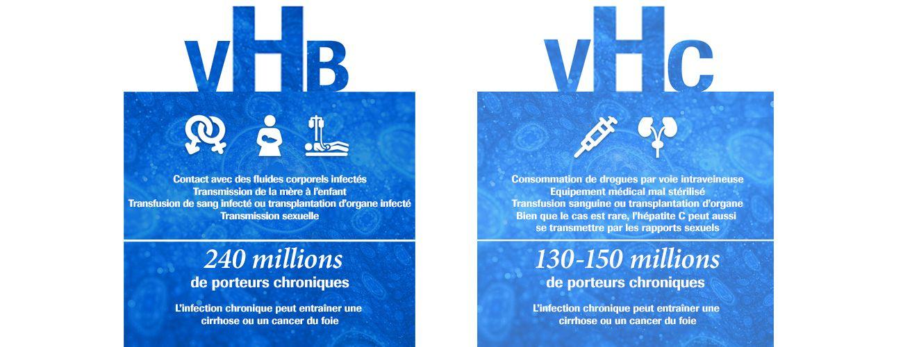 Hepatitis B facts; Hepatitis C facts