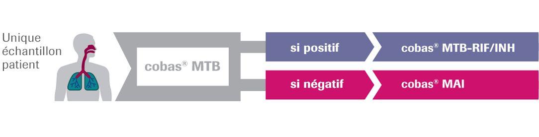 mtb-diagnostic-algorithm