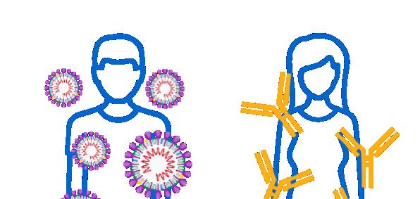 Covid-19: Mann mit Virus und Frau mit Antikörper