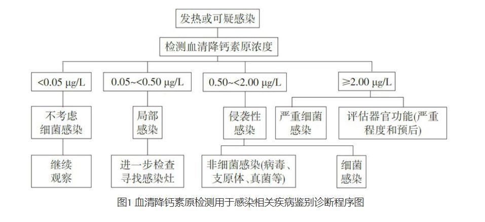 图1 血清降钙素原检测用于感染相关疾病鉴别诊断程序图