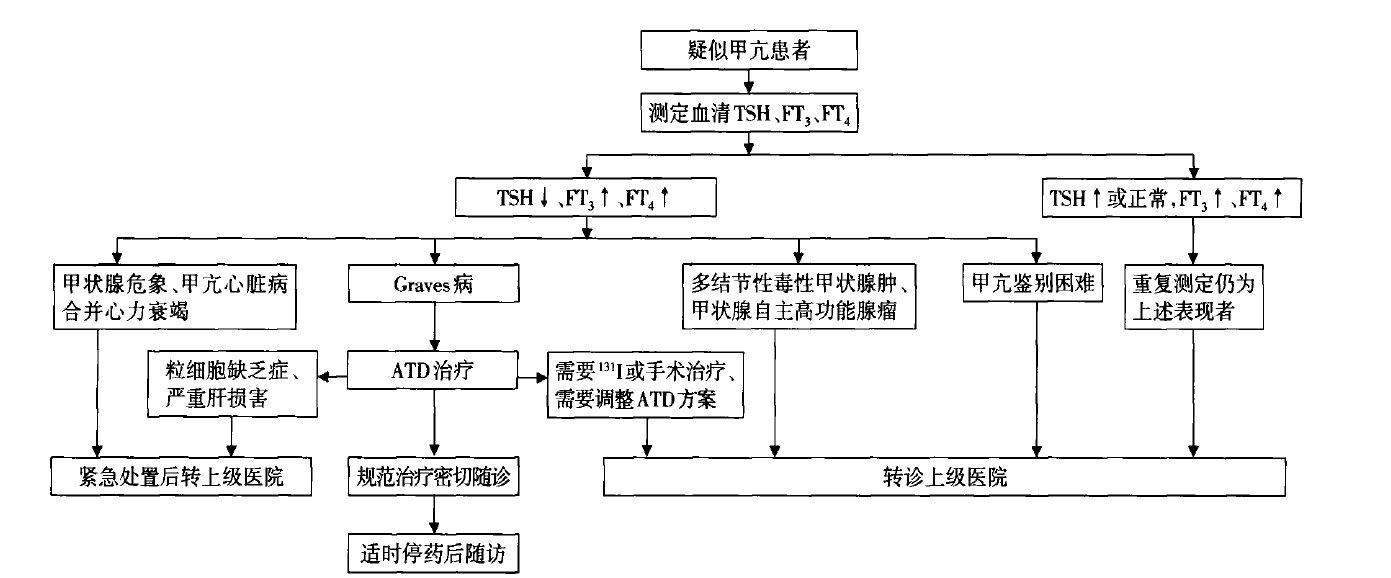 图2 甲状腺功能亢进症分级诊疗流程图