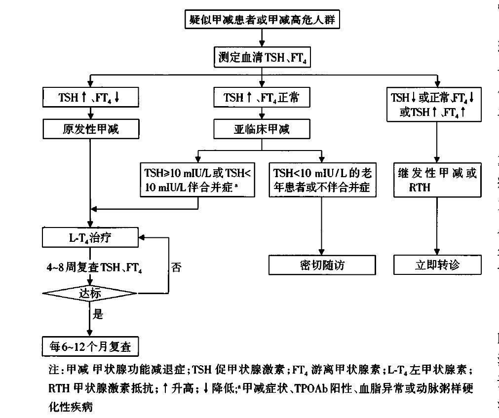 图4 甲状腺功能减退症患者基层管理流程