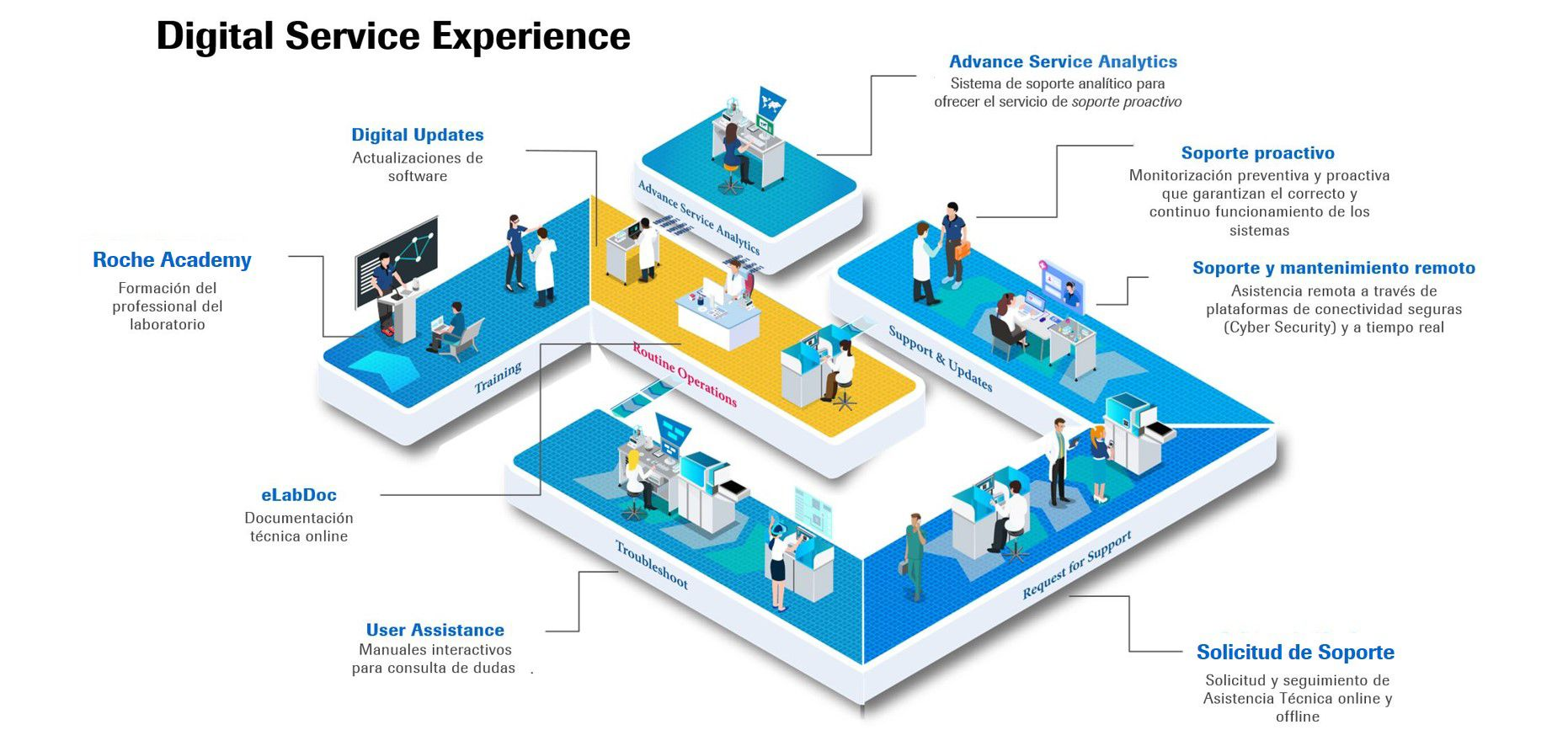 Digital Services Experience