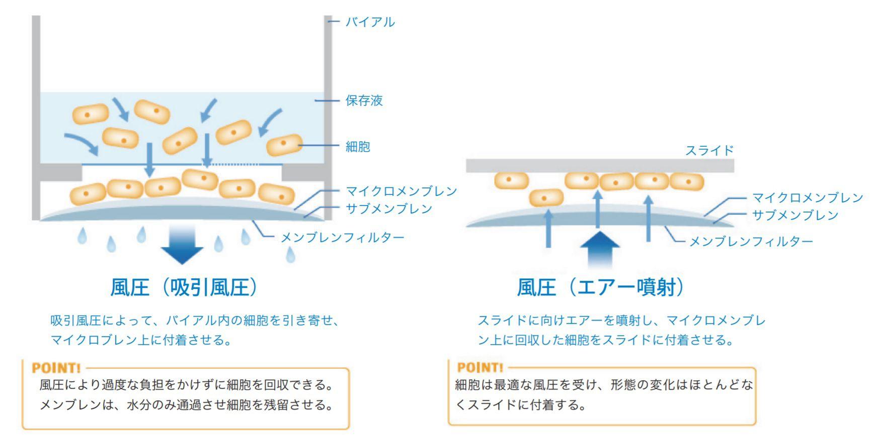 Cellprep法とは(説明図)
