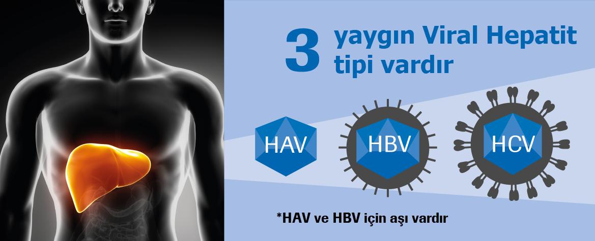 3 Tip Viral Hepatit