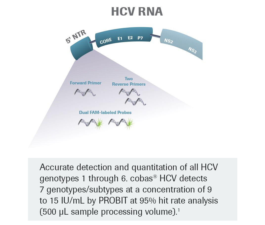 RNA-image