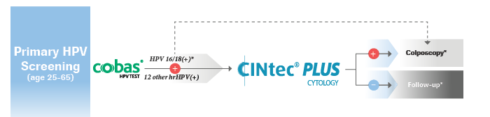 Primary HPV screening triage flowchart including CINtec PLUS Cytology