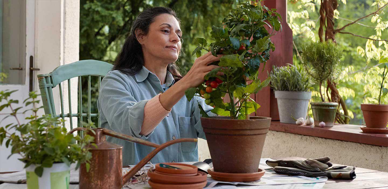 Women trimming plants